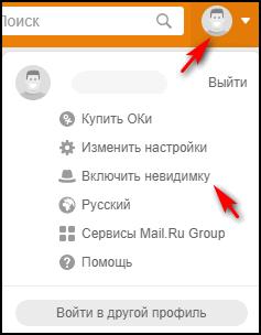 Подключение Невидимки в выпадающем списке под кнопкой с изображением профиля