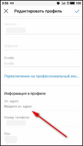 Поле Электронный адрес в приложении